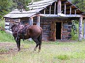 Batnuni ranch